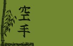 -karate-bamboo-karate-549001.jpg