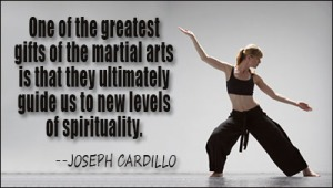 martial_arts_quote